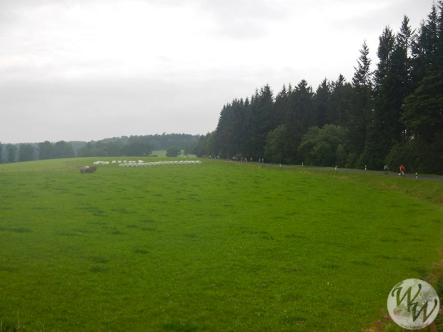 Feld mit Hauptstraße im Hintergrund