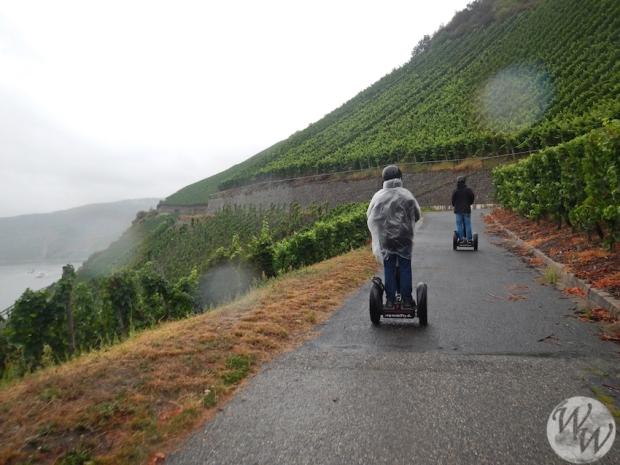 Segway durch die Weinberge