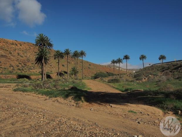 Der Weg durch das Barranco