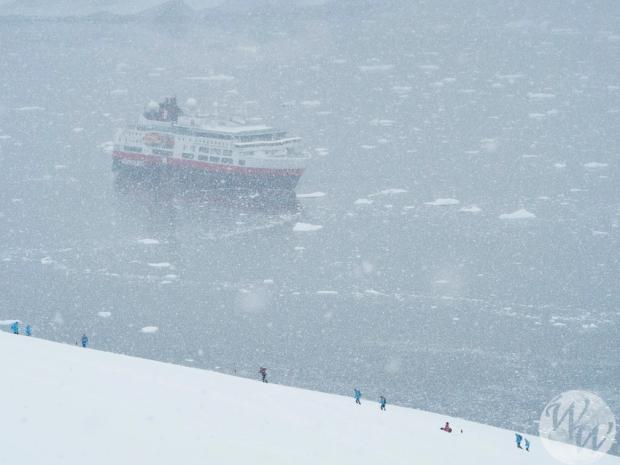 Neko Harbour - Schnee passte gut ins Bild