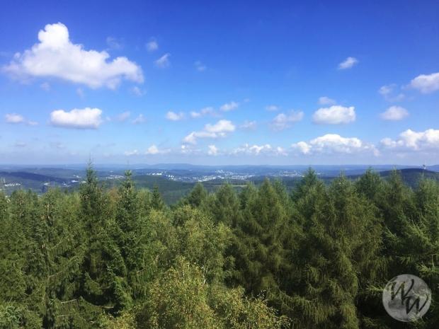 Aussicht vom Pfannenbergturm